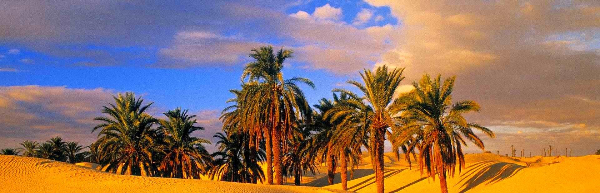Tunézia last minute utazás